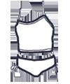 Icon - Mini Tank Bikini Set
